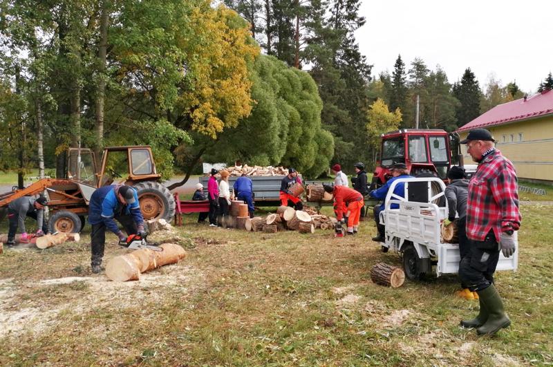 Savela-Ojakylän kyläyhdistyksen talkoopäivänä Ojakylän koulun pihapiiristä kaupunki kaatoi puita, jotka talkooväki sahasi pölleiksi ja polttopuiksi laavuille.