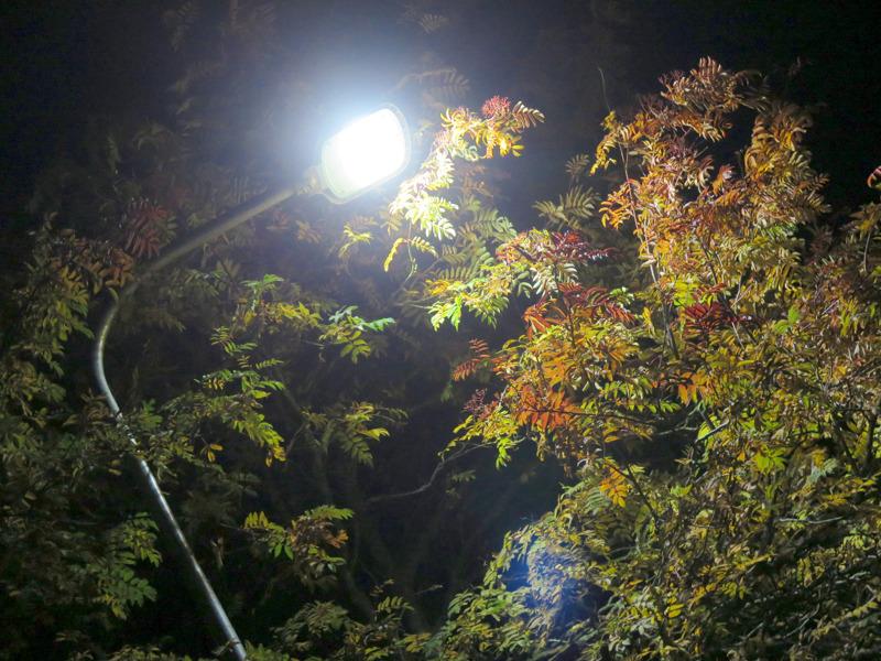 Lisää valoa pietarsaarelaisille. Kaupunki haluaa vaihtaa vanhat lamput ledeihin nopeammalla aikataululla.