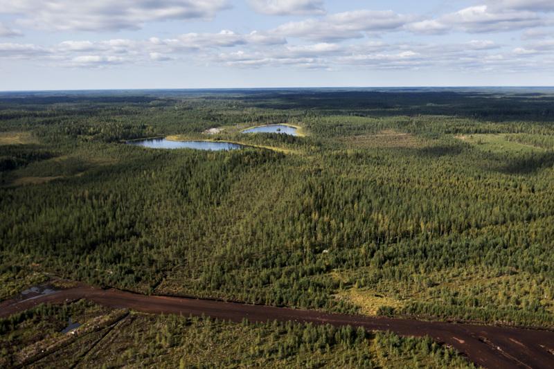 Kuvassa taustalla siintävä Syväjärvi kuivatetaan kaivoshankkeen ajaksi. Sen ja Päivänevan välille rakennettavan tien työt alkavat vuoden vaihteessa.