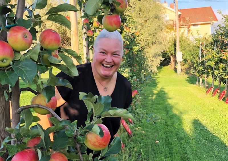 Pietarsaarelaisille lahjoitettu nimikkopuu sijaitsee Tjudössä, Öfvergårdsin tilalla, jota pitää pariskunta Anna ja Jan Alm. - Hedelmiä saatiin runsaasti, noin 10 kiloa, viljelijä Anna Alm kertoo.