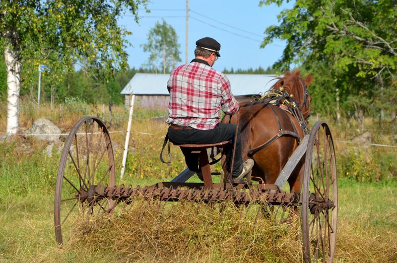 Einon syntymäkodissa maatyöt tehtiin käsityönä ja osaksi hevostyönä. Traktoria ei tunnettu.