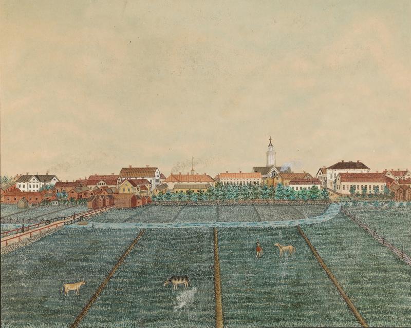 Conrad Soveliuksen maalaus Södra delen av Gamlakarleby stad on vuodelta 1876.