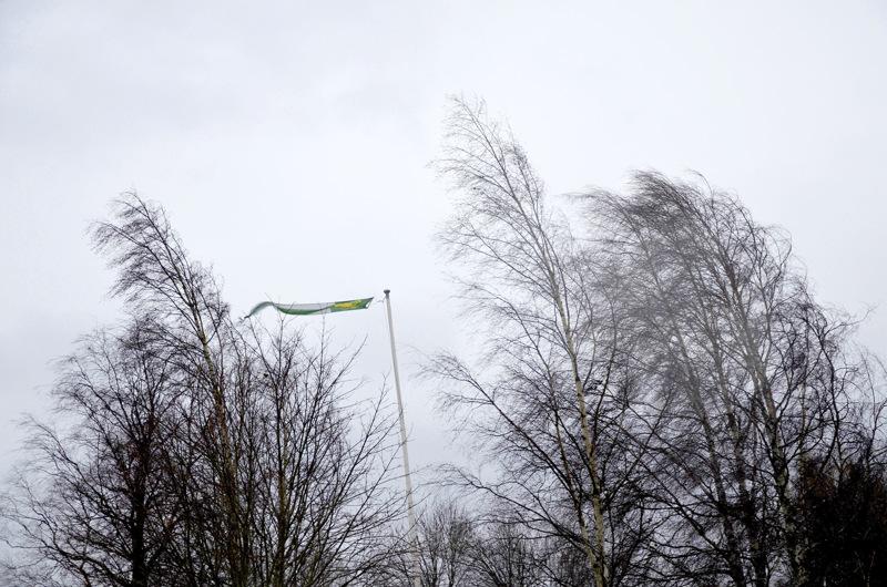 Tuuli yltyi Kalajoella maa-alueella merenrannan läheisyydessä kovaksi.