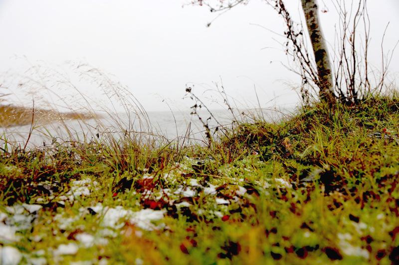 Lumi satoi maahan asti lauantaina Perhonjokilaakson alueella. Kuva Vetelin Räyringistä.