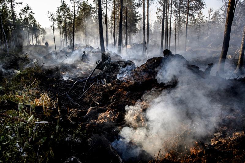 Maastopaloa heinäkuussa Kalajoen Rautiossa Mutkalammin tuulivoimapuiston alueen lähellä.  Pohjois-Pohjanmaan ELY-keskuksen tarjous suojelualueesta perustuu palanneen puuston nykyiseen rahalliseen arvoon.