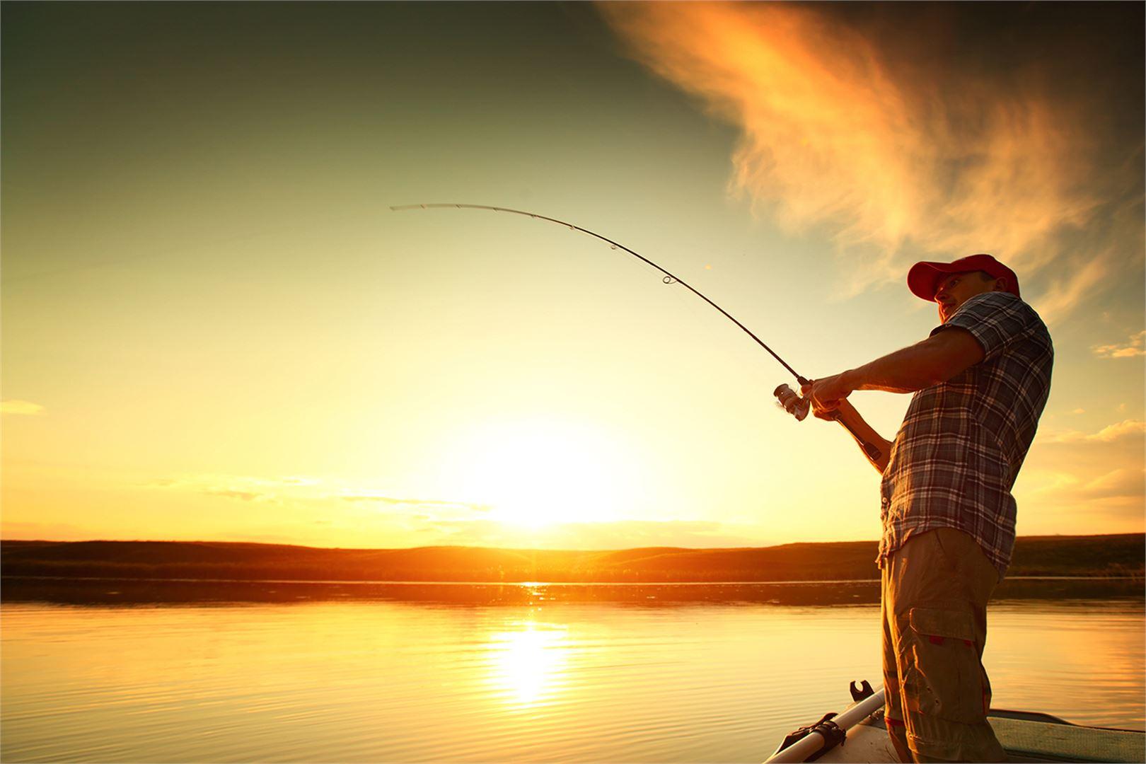 Keskipohjanmaan kalakisa