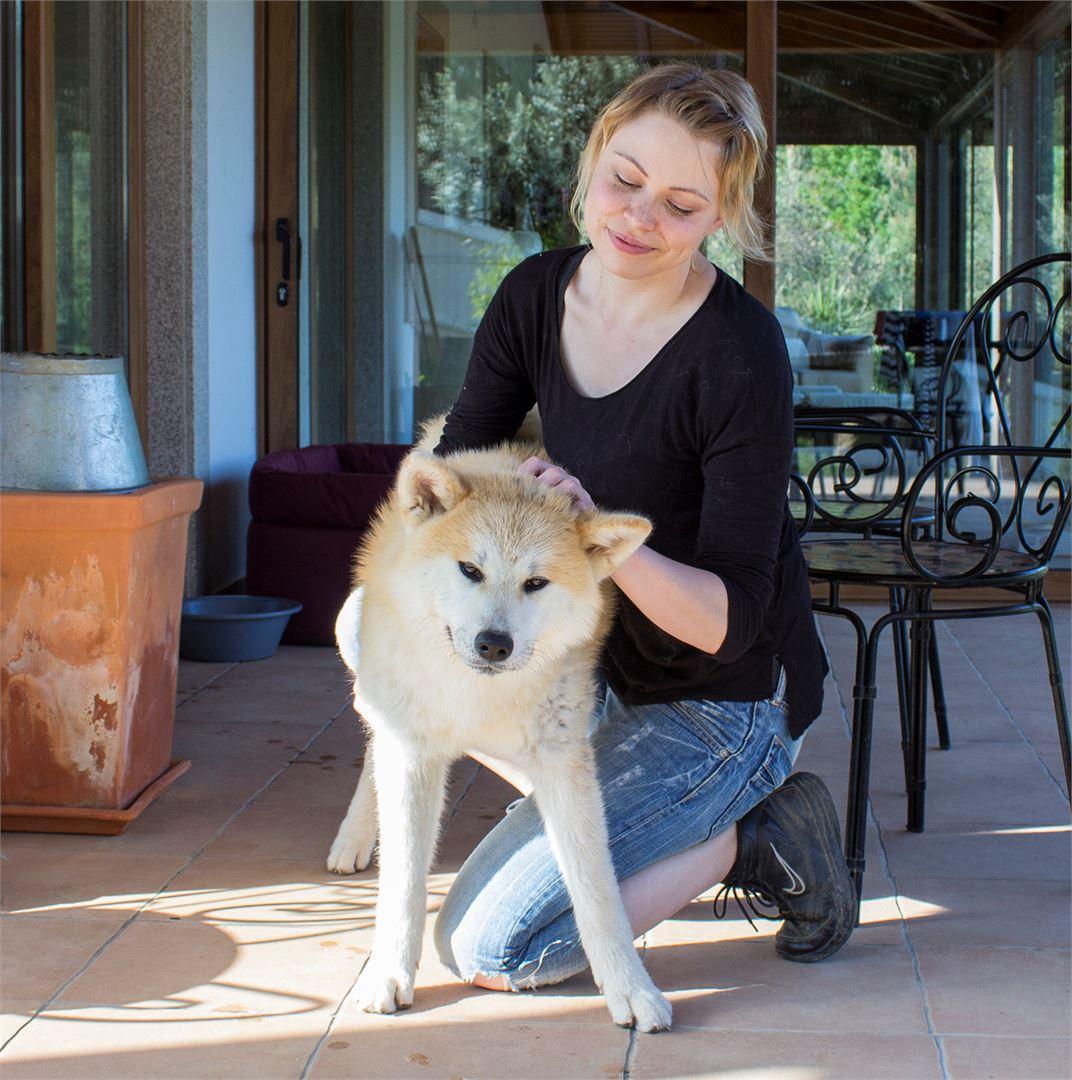 Koiralaumaan liittyi uusi pentu Katchina.