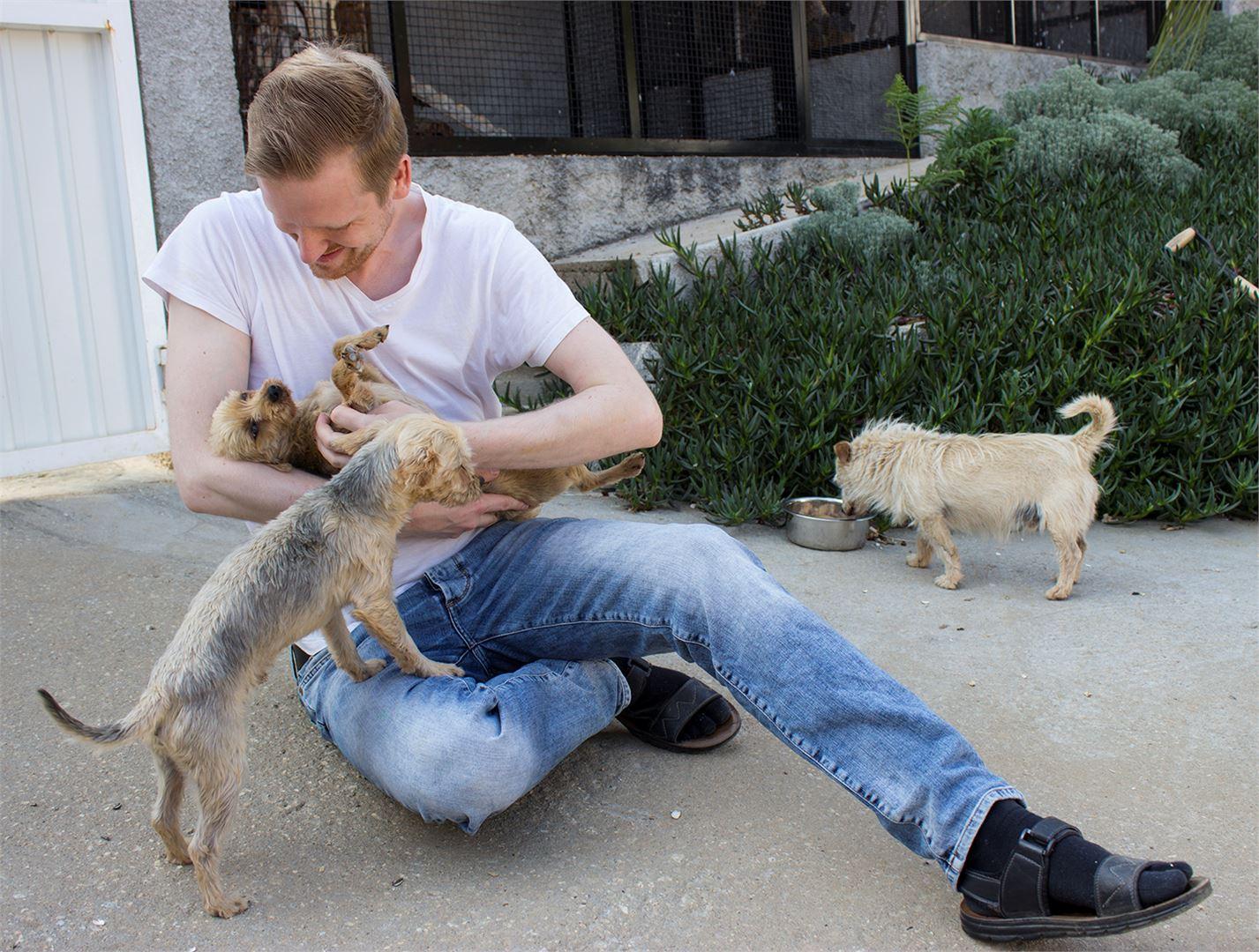 Johannes telmii farmilla koiranpentuveljesten Billin ja Benin kanssa. Taustalla koiravanhus Smot.