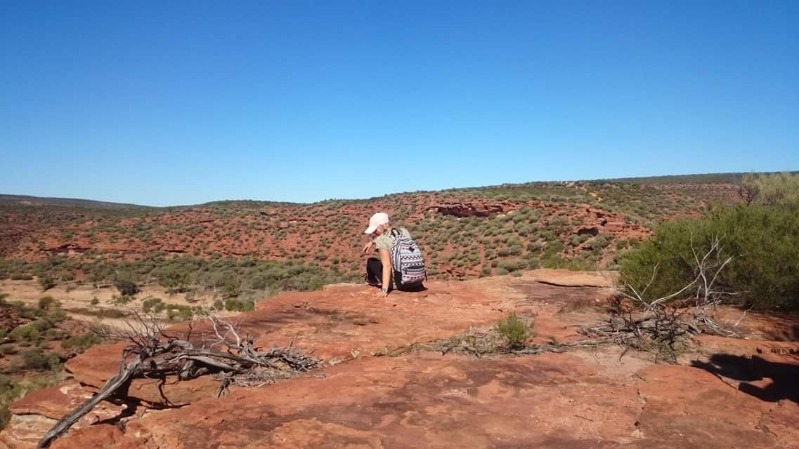 Australian Kalbarrin kansallispuistossa kalliot hohtavat punaisina.
