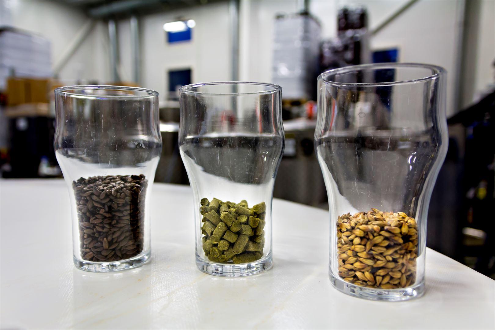 Maltaat ja humalat ovat oluen perusraaka-aineita. Kuva Markus Kärkinen