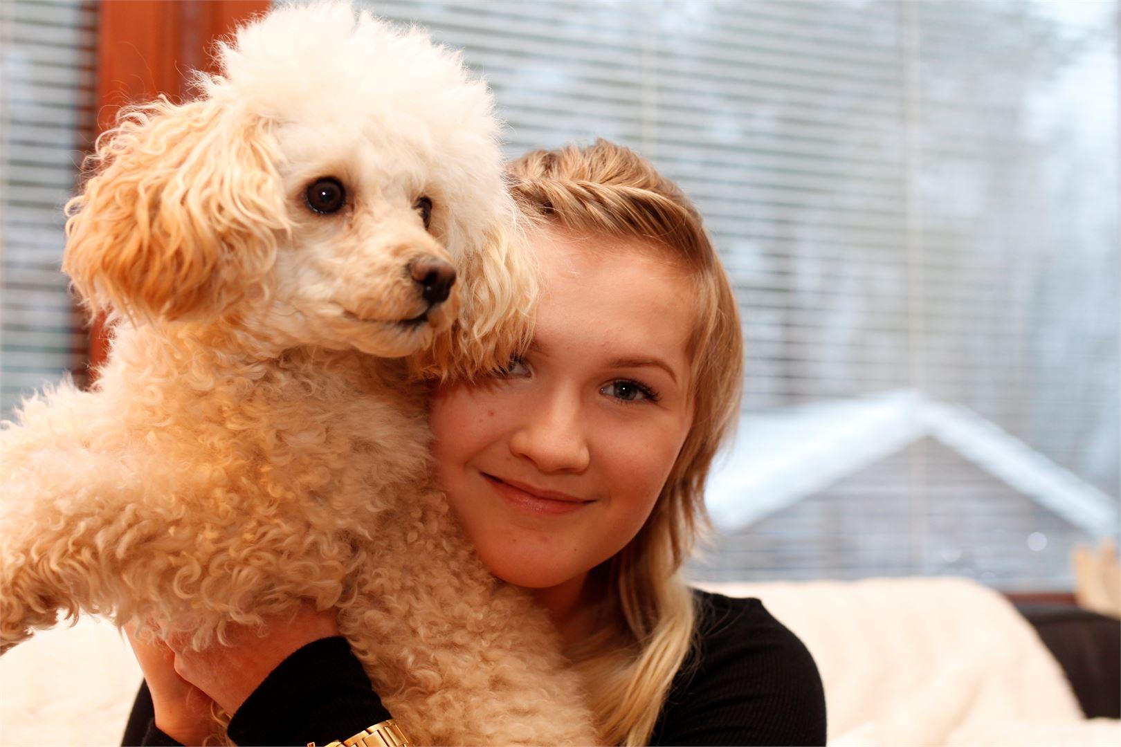 Lilli on toiminut oikeana terapiakoirana Ainon kotiuduttua sairaalasta.