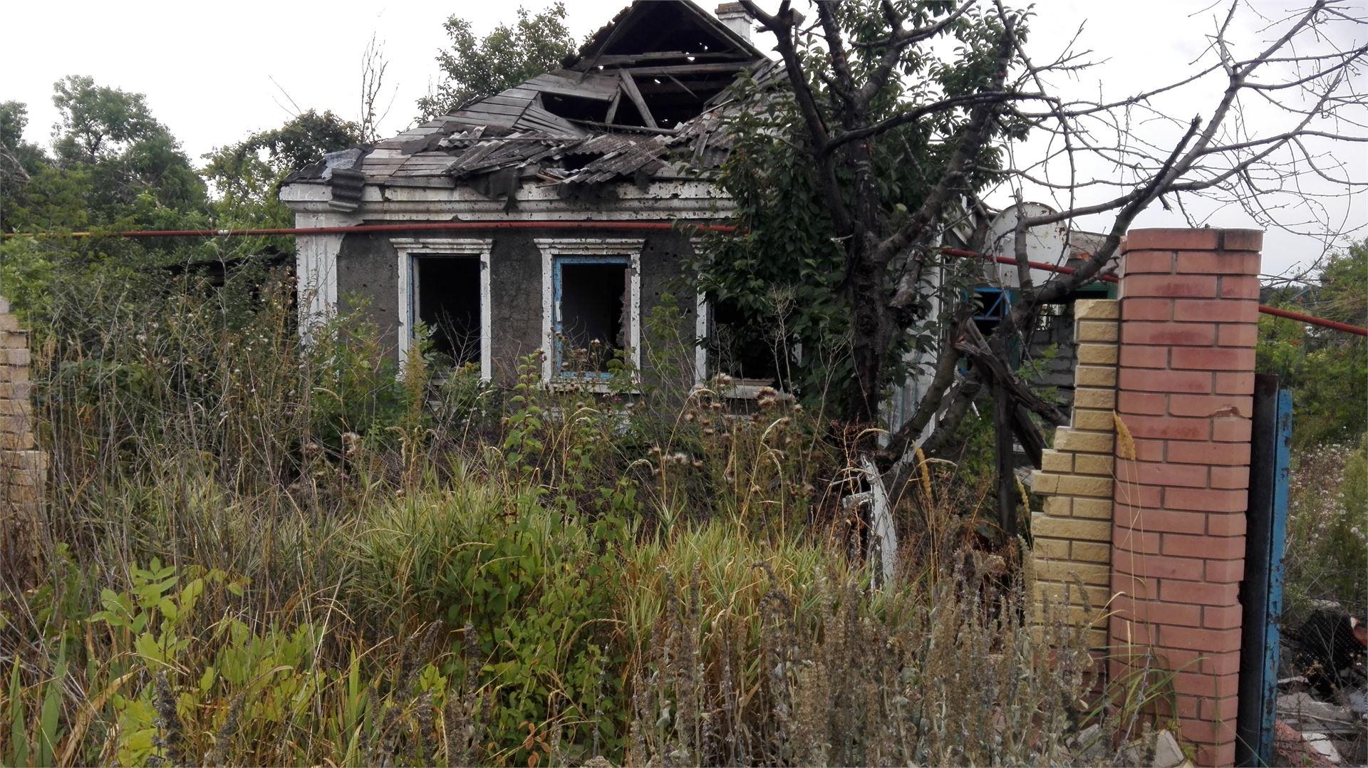 Разбитые, пустые дома, заросшие бурьяном дворы.